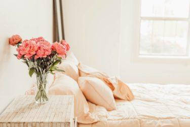 同棲ならベッドはセミダブルと思ってる人へ【賢い選択をしましょう】
