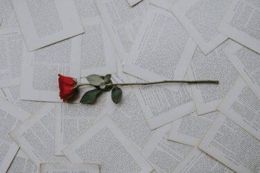 結婚式の新定番・Web招待状!メリット&デメリット解説【実際に届きました】